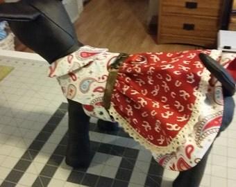 Cowgirl dog dress