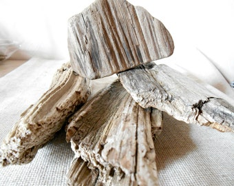 Driftwood pieces, 4 pieces set, medium sized driftwood pieces for craft,decoration, natural supplies