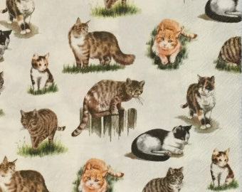 "3 Decoupage Lunch Napkins, Lovely Cats 13"" x 13"" Craft Supplies"