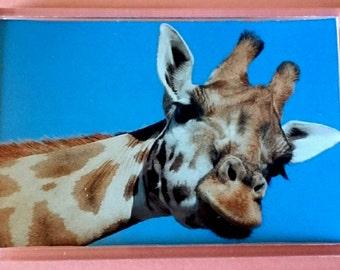 Giraffe - Jumbo Acrylic Fridge Magnet