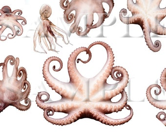 Stock photo PNG files Octopus tentacles
