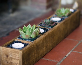 Succulent Planter, Rustic Wood Display Box