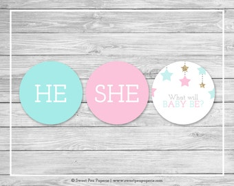 Twinkle Little Star Gender Reveal Cupcake Toppers - Printable Gender Reveal Cupcake Toppers - Pink Aqua Gold Gender Reveal - Toppers - SP139
