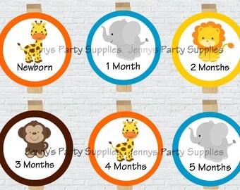 12 Month Safari Clip Photo Banner, Jungle Animals First Year Banner Clips, Safari Clothespin Banner, Baby First Year Photo Banner