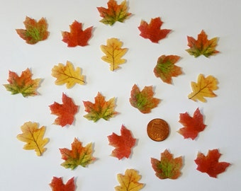 Edible Fall Leaves, Mini Wafer Paper Toppers for Cakes, Cupcakes, Pies or Cookies