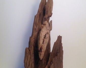 Free Standing Driftwood