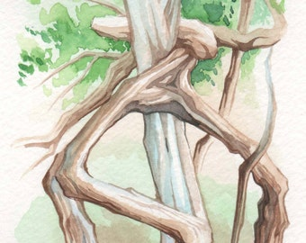 Tangled Tree | 4x6 Original Watercolor