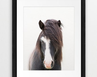 Horse Print, Horse Photo, Icelandic Horse, Animal Photography, Wilderness Print, Equestrian Art, Modern Wall Art, Printable Instant Download