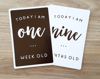 CLEARANCE + LITTLE ONE baby milestone cards