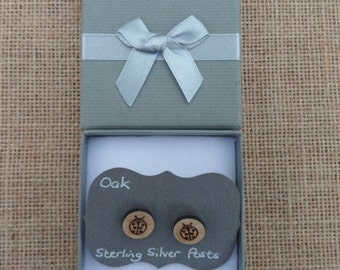 Oak Ladybird Stud Earrings
