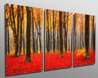 Metal Prints - Fall Trees with Red and Yellow leafs - 3 Panel split (Triptych) - Metal wall art on HD aluminum prints for interior design.