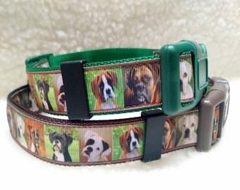 Boxer Dog Collar