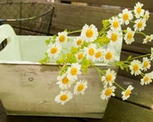 Rustic Wooden Box / Planter / Container / Home Decor/ Etsy Photo Prop and Craft Supply