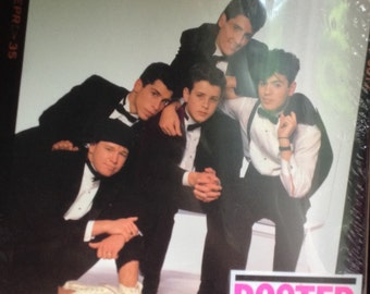 New Kids on the Block poster book (9 posters)