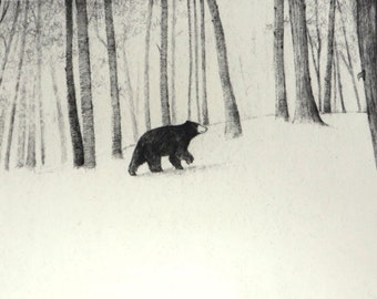 Bear in the Woods Print