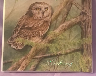 beautiful anniversary card I think any husband would like with an owl sitting on a branch in the woods,a name or number can be added