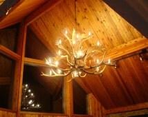 Real Antler Elk / Fallow Deer Chandelier Light, Rustic