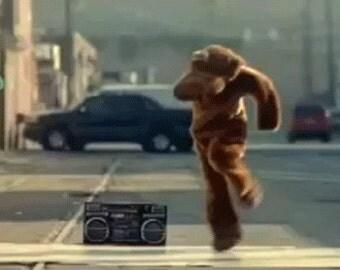 Dancing Bear Street Team