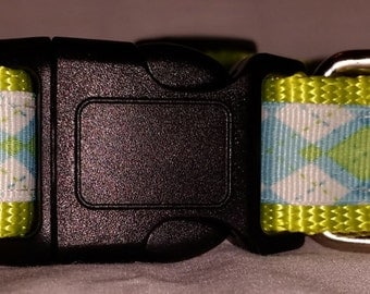 Blue lime green argyle dog collar