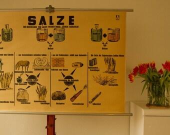 Vintage  Pull Down Chart Salt  School Chart