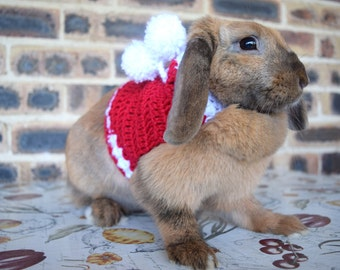 Christmas sweater for bunnies, pet rabbit Christmas sweater, red sweater for bunnies, crochet sweater for pet rabbit, pet rabbit clothes