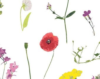 Petal Picking Dainty from Lavish  - 1/2 Yard - Katarina Roccella for Art Gallery Fabric