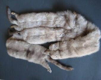 Fur collar animal shoulder stole. Silver color (Estate Find)