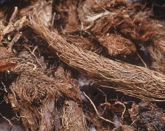 JATAMANSI root , spikenard , muskroot II balchar , nardin , whole