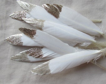 White & Gold Feathers
