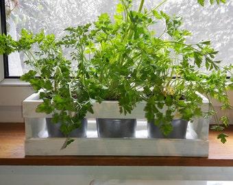 Kitchen Herb Planter White Herb Garden