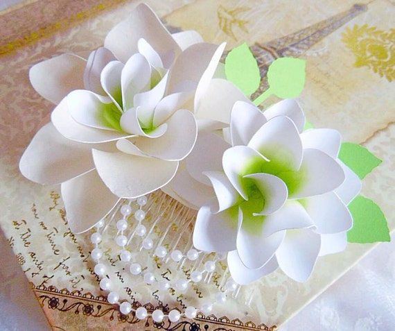 how to grow a lily from a cutting