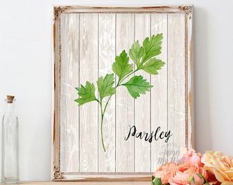 Kitchen wall art, parsley, decor, herb print, botanical print, food art, parsley art, watercolor, botanical illustration, 5x7, 8x10, 11x14