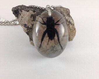 Cricket necklace