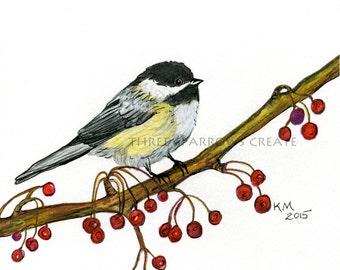 Chickadee, Fine Art Print, Watercolor, Pencil, Ink, Bird Print, Bird on Branch, Berries,
