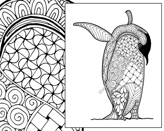 Intricate Coloring Pages Animals : Penguin coloring sheet animal pdf zentangle