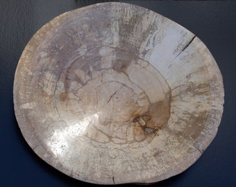 Spalted beech natural edge bowl
