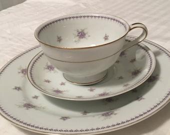 Noritake Teacup set