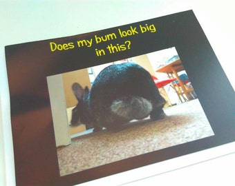 FREE UK p&p, Does my Bum look big in this? card, Birthday card, blank card, bunny greeting card, rabbit card, bunny card, bunny card, funny