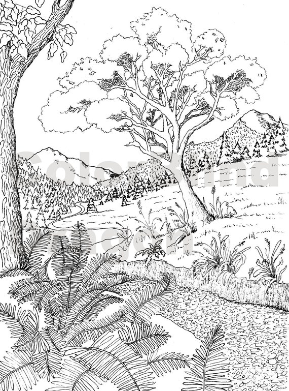 Wilderness coloring page coloring