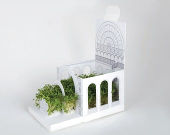 Pop-up botanical growing kit and greeting card
