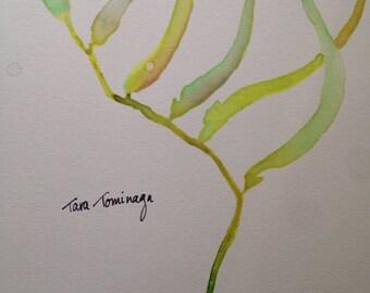 Sea Kelp - Watercolor Painting