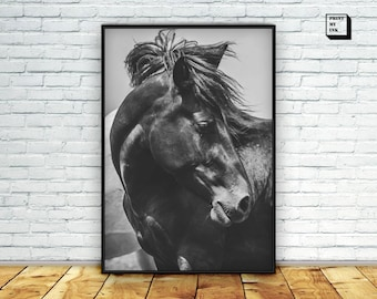 Horse photography, Horse print, Black and white photography, Black horse poster, horse printable, wild horse, wall art print, horse download