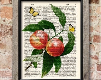 Peaches Wall Art, Fruit Print, Dictionary page print, Kitchen decor, Vintage book art print,  Home Wall Decor, Gift poster [ART 111]