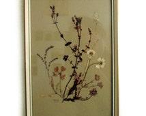 Vintage 1960s Pressed Flowers of Scotland Framed Picture Signed Wild Orkney Botanical Specimen