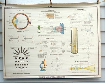 The Eye and Optical Appliances Vintage Science Chart