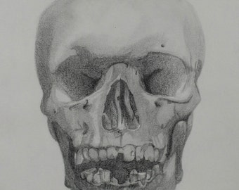 Skull Front View, Original Graphite Drawing, 7.75X10