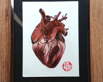 "Framed original watercolor ""Anatomical heart"""