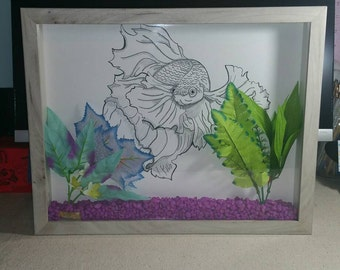 Betta fish sketch in aquarium shadow box