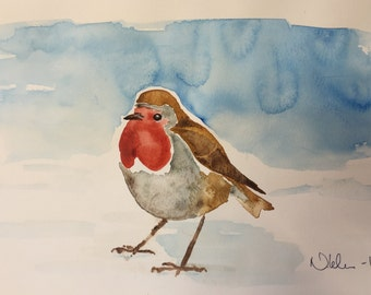 Rödhake(Robin)