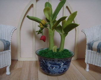For your conservatory, a 1/12 th scale banana tree